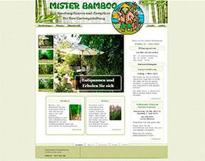Mister Bamboo - Bambuspflanzen