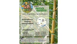 Anzeige 190 x 220 mm - Mister Bamboo